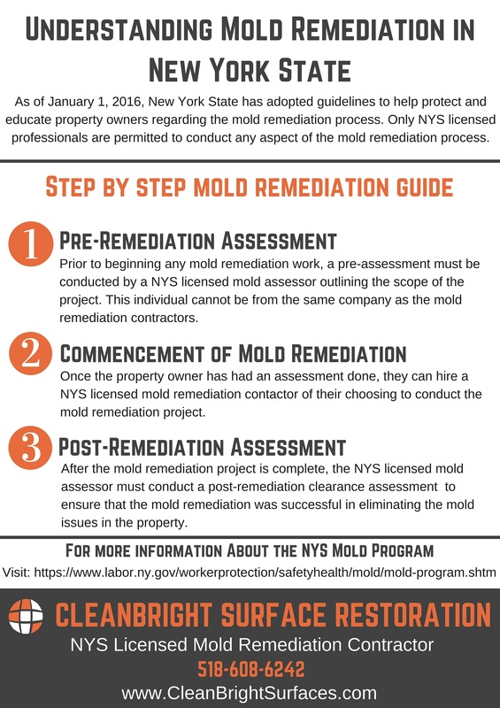 Understanding the Mold Remediation process in New York State