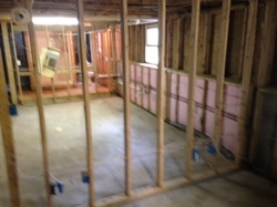 Walls taken down to the studs and treated as part of mold remediation