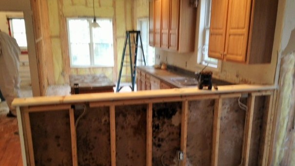 Mold remediation process in bank owned foreclosure