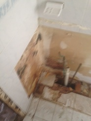 Mold growth behind a bathroom sink in Schenectady, NY